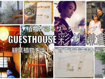 (ワークショップのお知らせ)GUESTHOUSE彩り鎌倉を植物で彩る